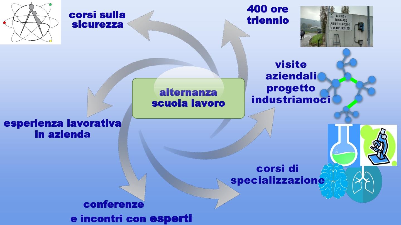 Presentazione biologico10
