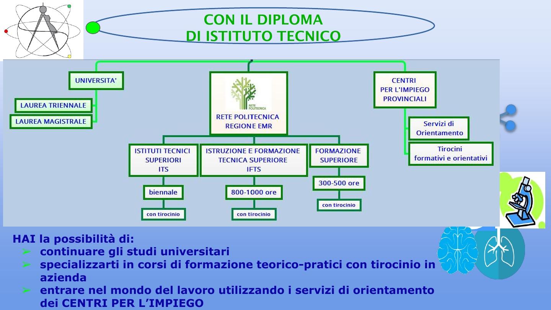 Presentazione biologico11