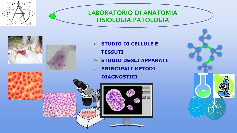 Presentazione biologico6