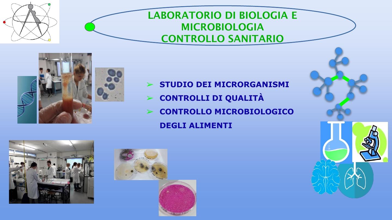 Presentazione biologico7