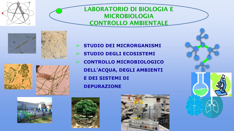Presentazione biologico8