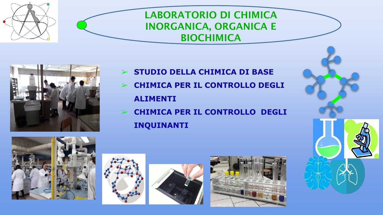 Presentazione biologico9
