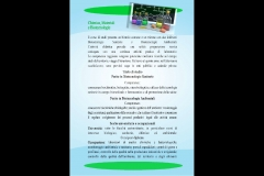 Presentazione-scuola3